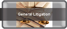 litigation-lawyers